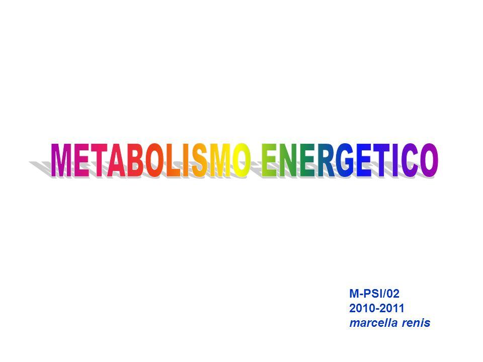 M-PSI/02 2010-2011 marcella renis