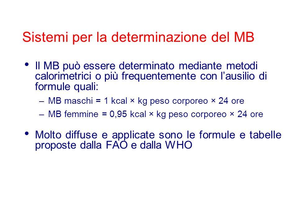 Il MB può essere determinato mediante metodi calorimetrici o più frequentemente con lausilio di formule quali: –MB maschi = 1 kcal × kg peso corporeo