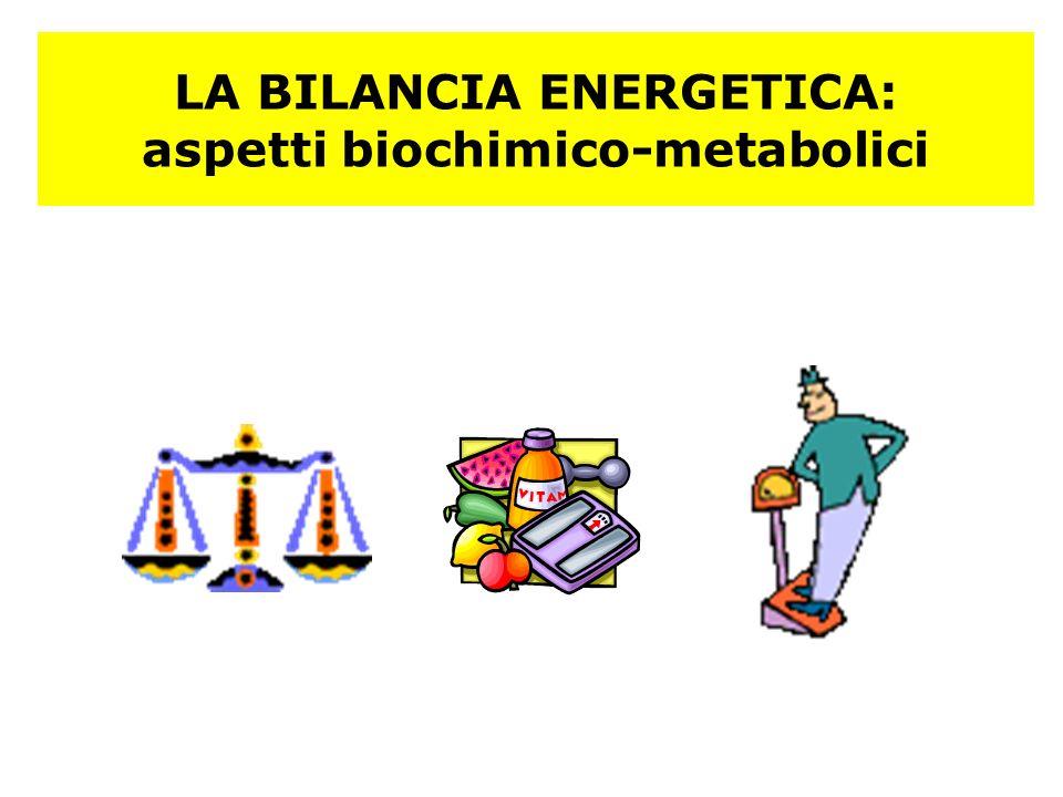 LA BILANCIA ENERGETICA: aspetti biochimico-metabolici