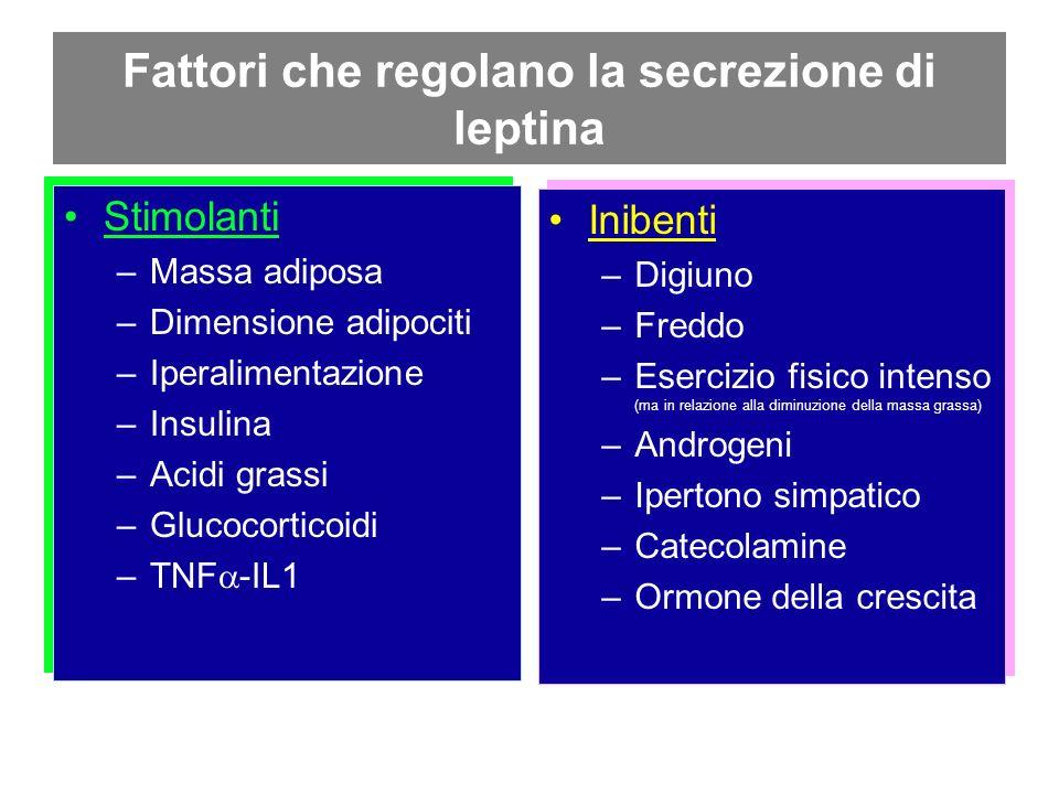 Fattori che regolano la secrezione di leptina Stimolanti –Massa adiposa –Dimensione adipociti –Iperalimentazione –Insulina –Acidi grassi –Glucocortico