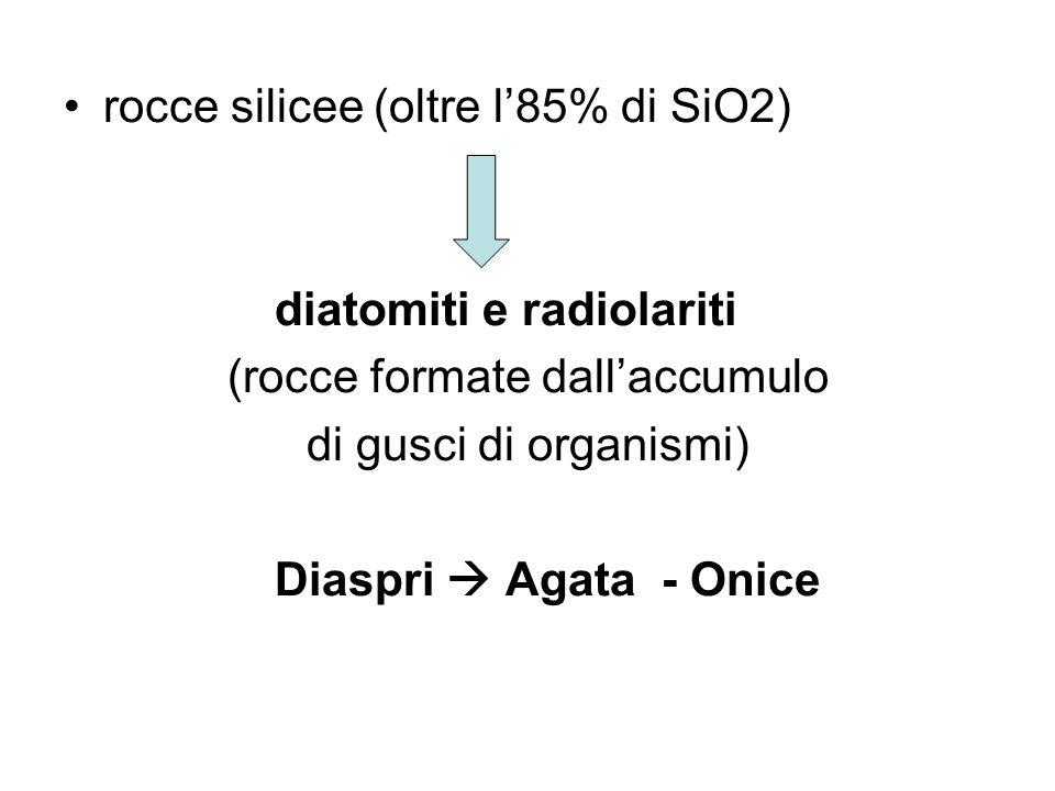 rocce silicee (oltre l85% di SiO2) diatomiti e radiolariti (rocce formate dallaccumulo di gusci di organismi) Diaspri Agata - Onice