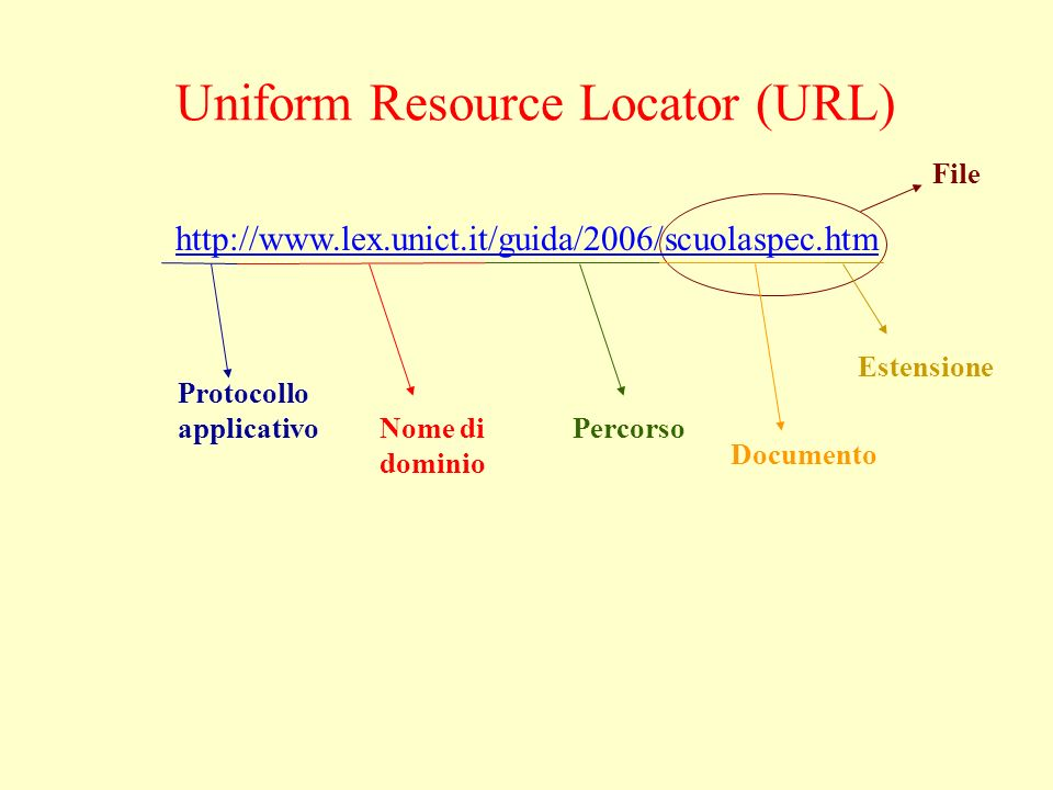 Uniform Resource Locator (URL) http://www.lex.unict.it/guida/2006/scuolaspec.htm Protocollo applicativo Nome di dominio Percorso Documento Estensione File