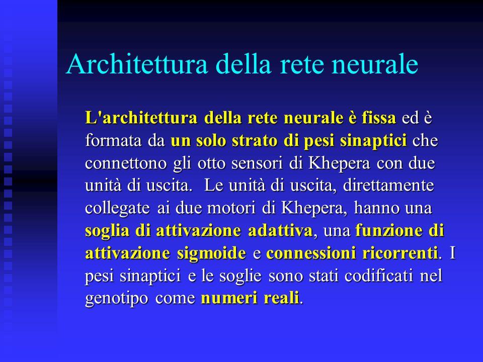 Architettura della rete neurale L'architettura della rete neurale è fissa ed è formata da un solo strato di pesi sinaptici che connettono gli otto sen