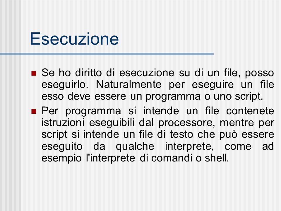 Esecuzione Se ho diritto di esecuzione su di un file, posso eseguirlo. Naturalmente per eseguire un file esso deve essere un programma o uno script. P