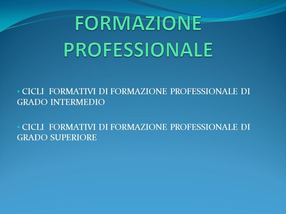 CICLI FORMATIVI DI FORMAZIONE PROFESSIONALE DI GRADO INTERMEDIO CICLI FORMATIVI DI FORMAZIONE PROFESSIONALE DI GRADO SUPERIORE