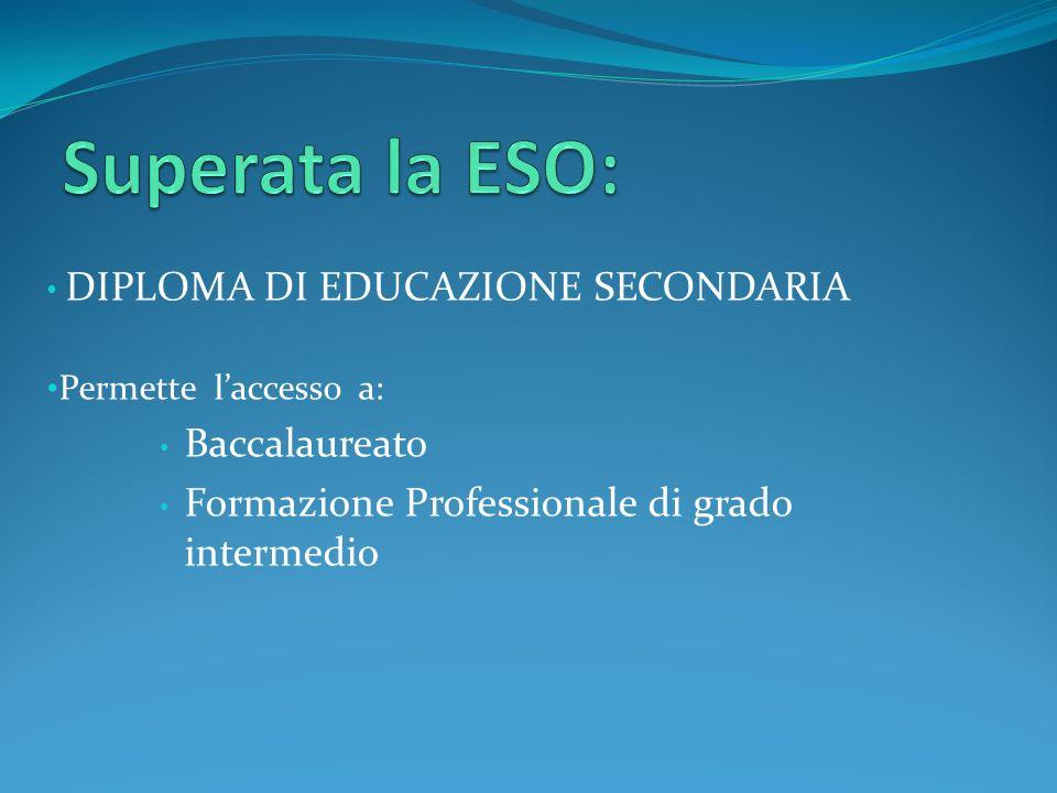 DIPLOMA DI EDUCAZIONE SECONDARIA Permette laccesso a: Baccalaureato Formazione Professionale di grado intermedio