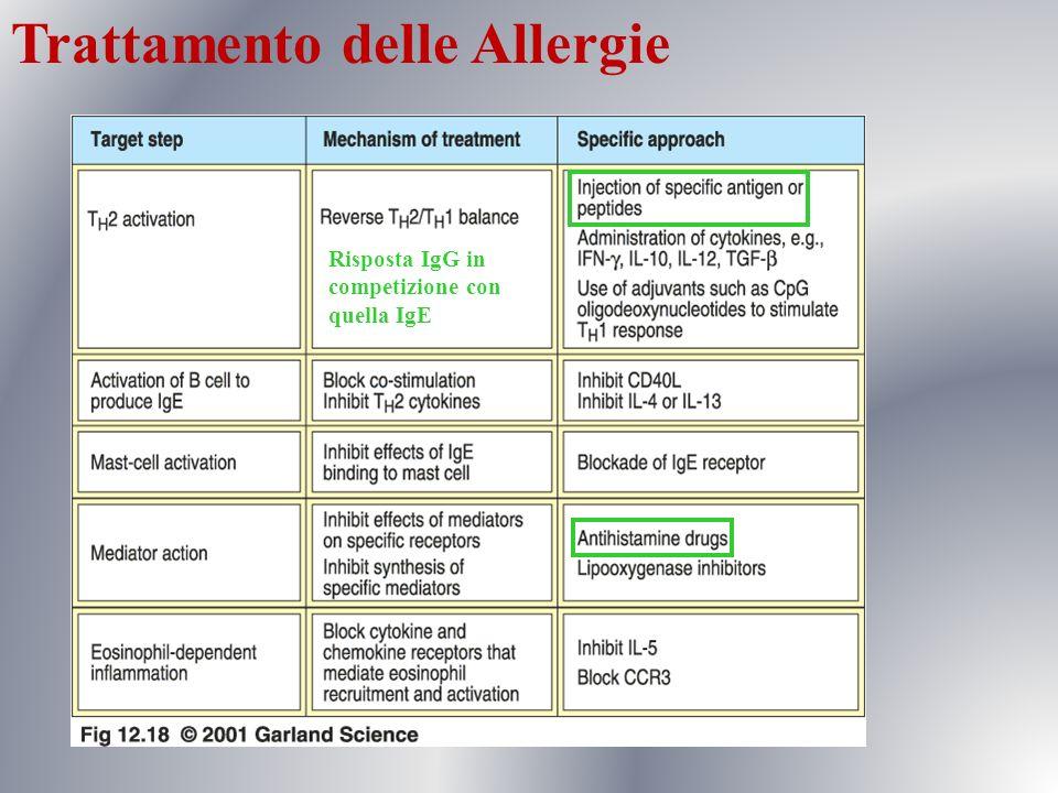 Trattamento delle Allergie Risposta IgG in competizione con quella IgE