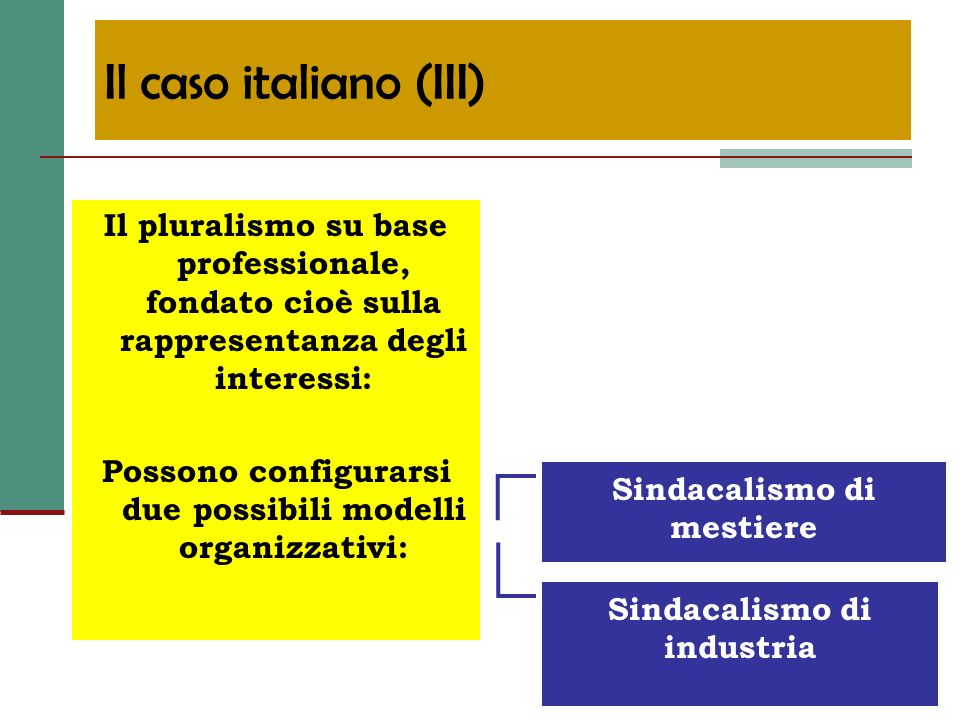 Il pluralismo su base professionale, fondato cioè sulla rappresentanza degli interessi: Possono configurarsi due possibili modelli organizzativi: Sind