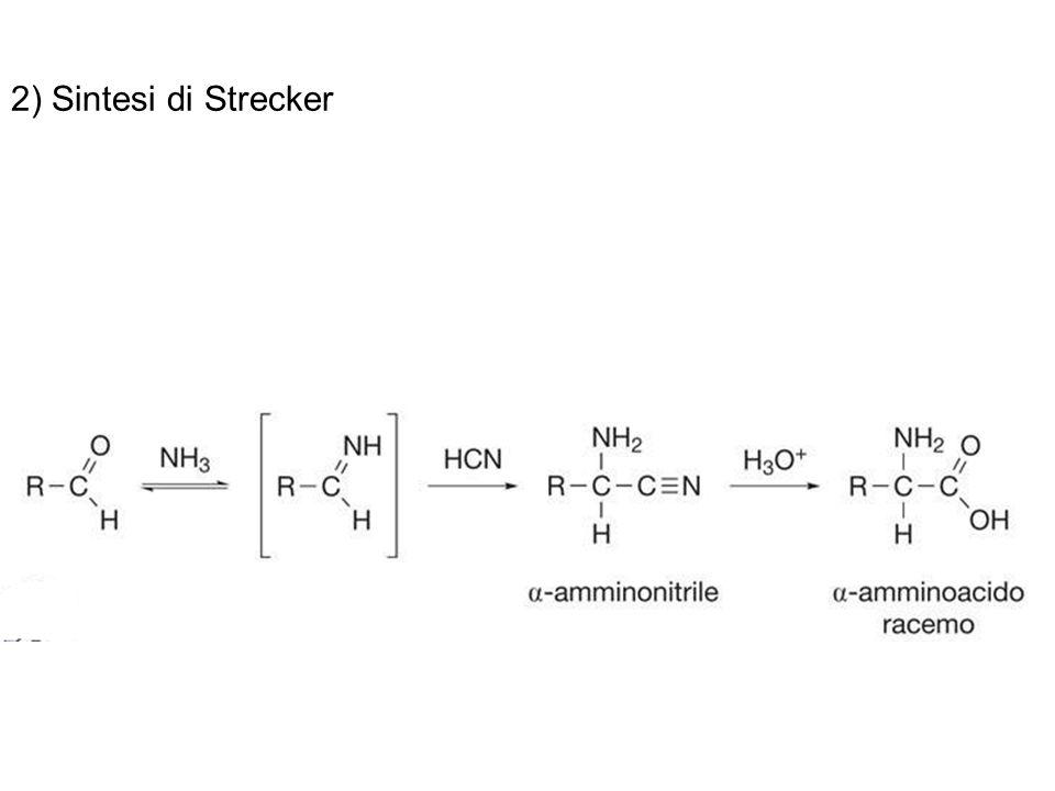 2) Sintesi di Strecker