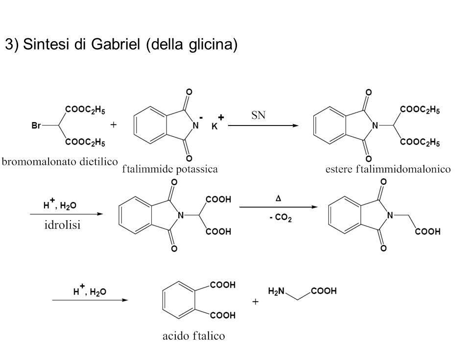 3) Sintesi di Gabriel (della glicina)