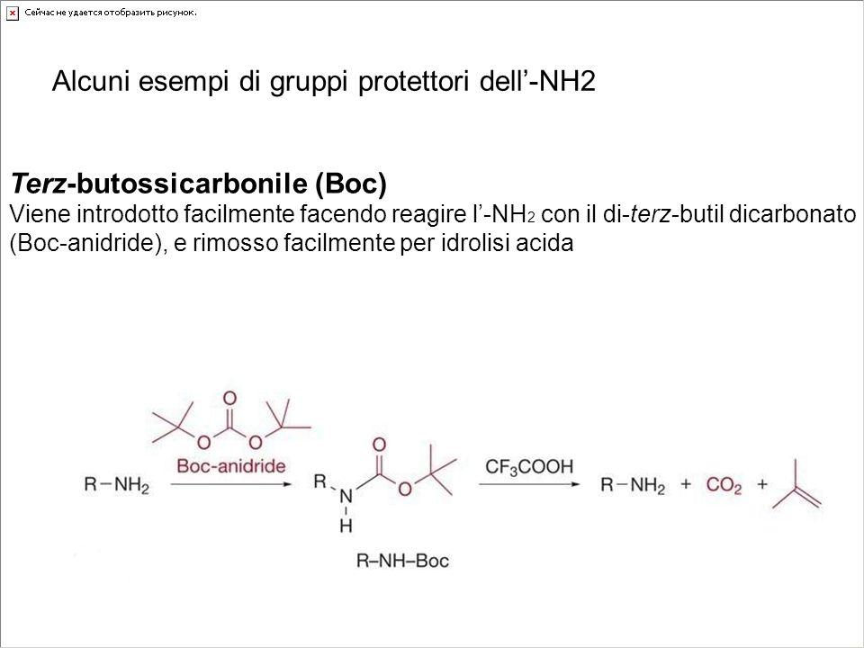 Terz-butossicarbonile (Boc) Viene introdotto facilmente facendo reagire l-NH 2 con il di-terz-butil dicarbonato (Boc-anidride), e rimosso facilmente p
