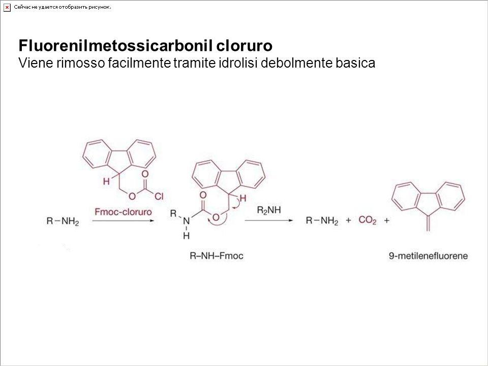 Fluorenilmetossicarbonil cloruro Viene rimosso facilmente tramite idrolisi debolmente basica