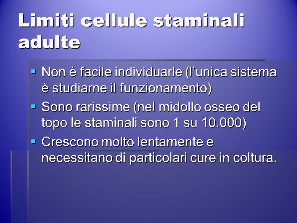 Limiti cellule staminali adulte Non è facile individuarle (lunica sistema è studiarne il funzionamento) Non è facile individuarle (lunica sistema è st