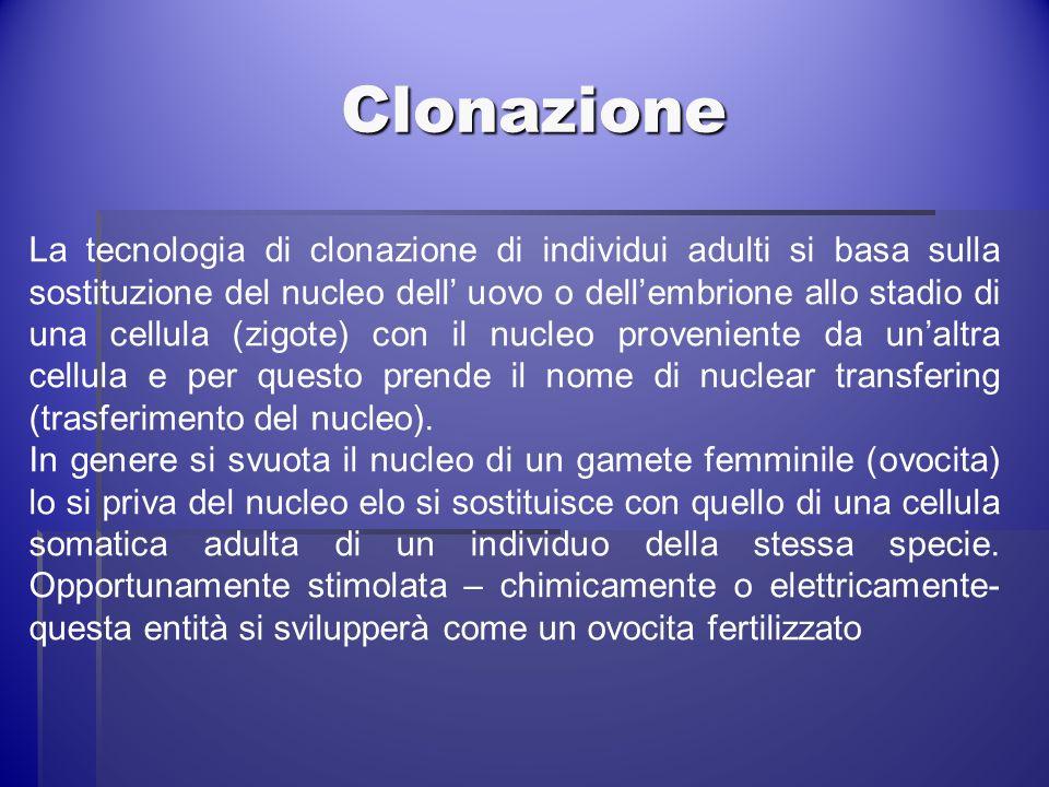 Clonazione La tecnologia di clonazione di individui adulti si basa sulla sostituzione del nucleo dell uovo o dellembrione allo stadio di una cellula (