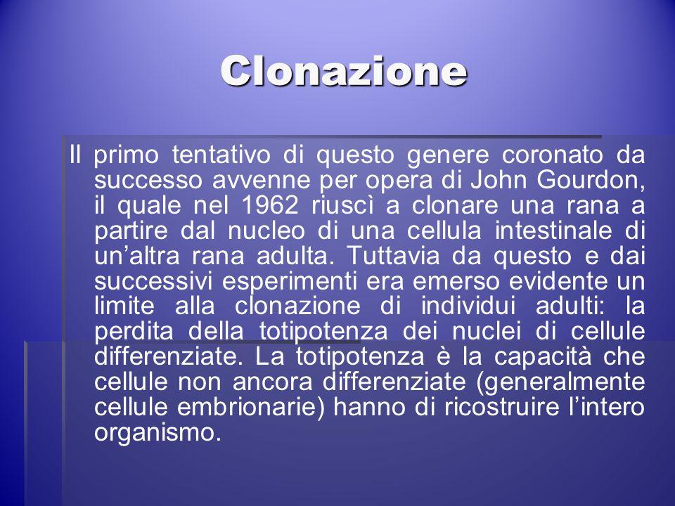 Clonazione Il primo tentativo di questo genere coronato da successo avvenne per opera di John Gourdon, il quale nel 1962 riuscì a clonare una rana a p