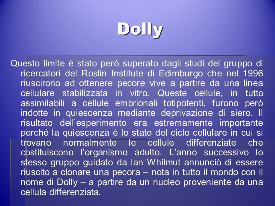 Dolly Questo limite è stato però superato dagli studi del gruppo di ricercatori del Roslin Institute di Edimburgo che nel 1996 riuscirono ad ottenere