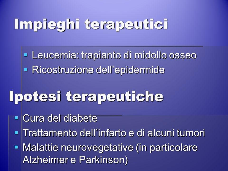 Impieghi terapeutici Leucemia: trapianto di midollo osseo Leucemia: trapianto di midollo osseo Ricostruzione dellepidermide Ricostruzione dellepidermi
