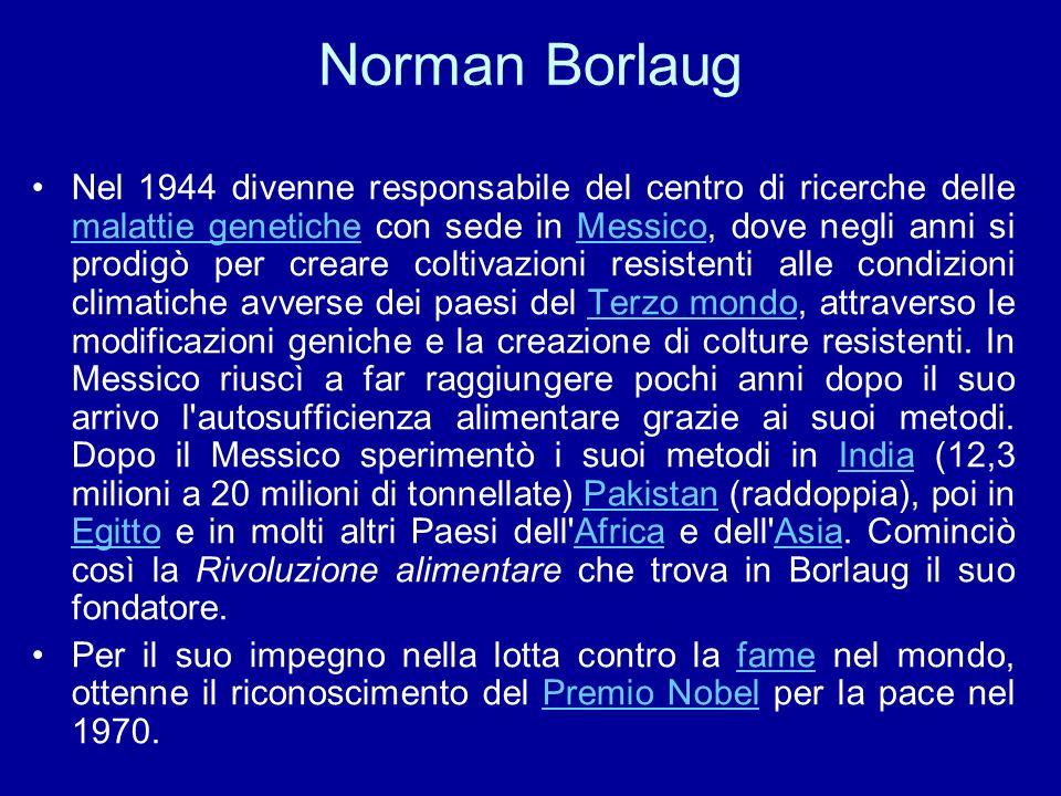 Norman Borlaug Nel 1944 divenne responsabile del centro di ricerche delle malattie genetiche con sede in Messico, dove negli anni si prodigò per crear