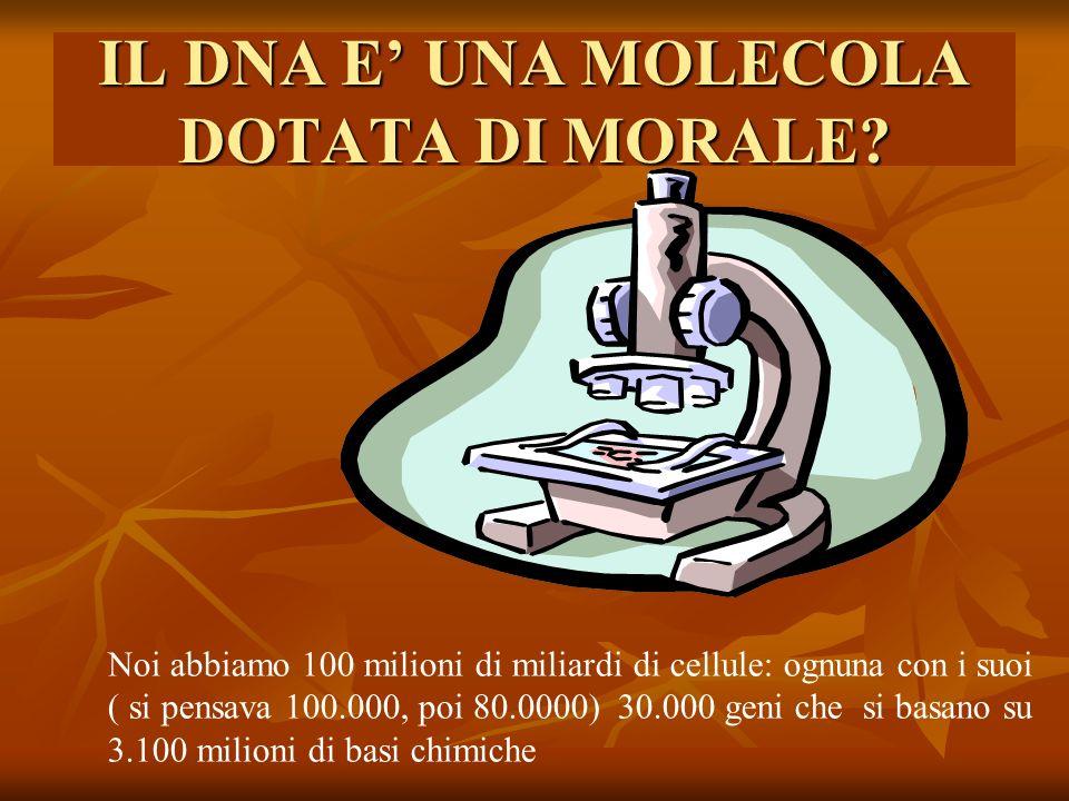 IL DNA E UNA MOLECOLA DOTATA DI MORALE.