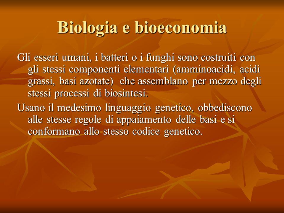 Biologia e bioeconomia Gli esseri umani, i batteri o i funghi sono costruiti con gli stessi componenti elementari (amminoacidi, acidi grassi, basi azotate) che assemblano per mezzo degli stessi processi di biosintesi.