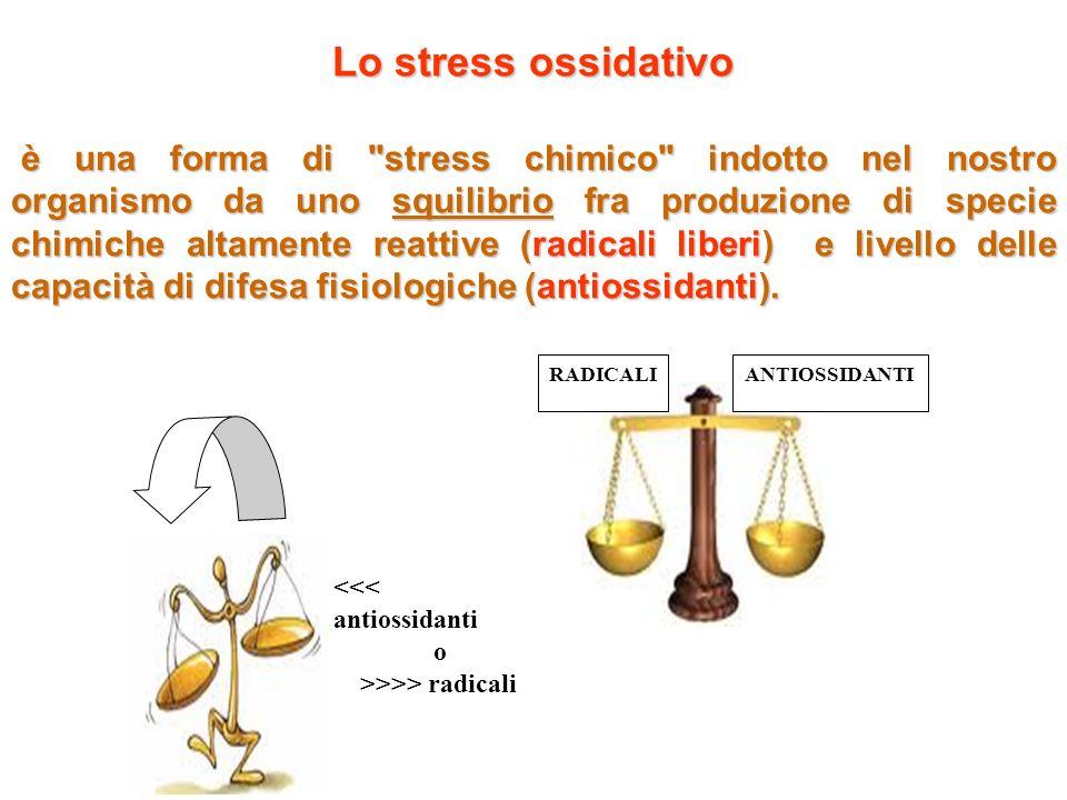 Lo stress ossidativo è una forma di