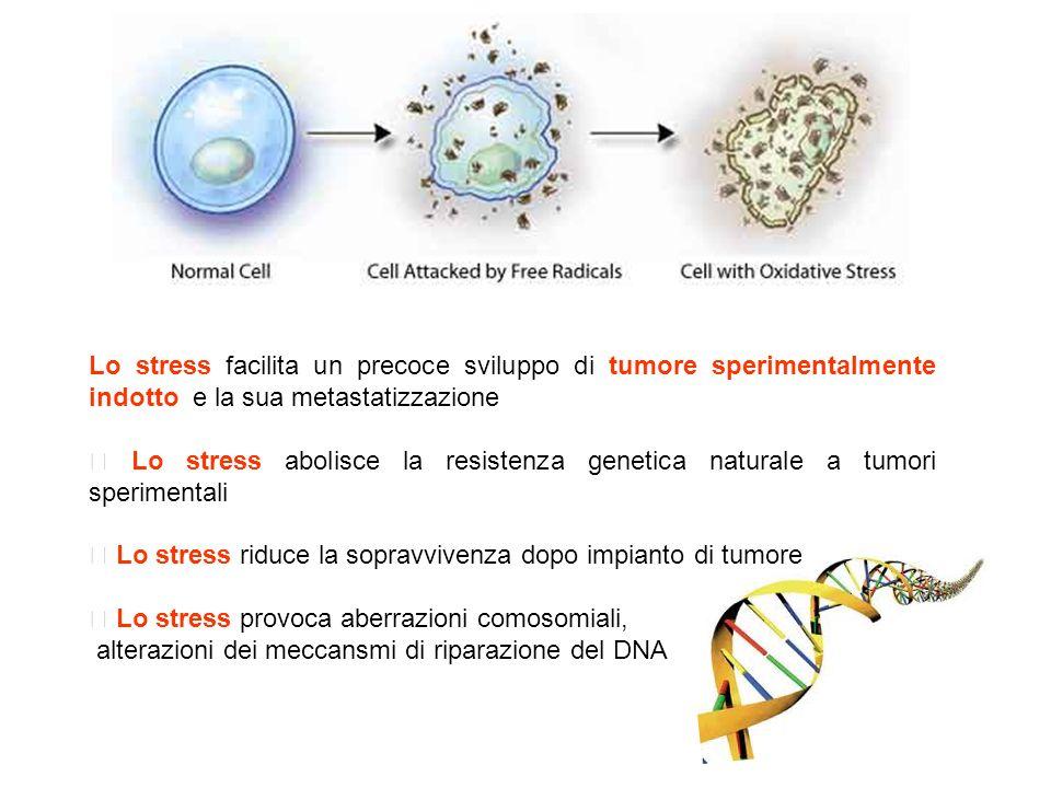 Lo stress facilita un precoce sviluppo di tumore sperimentalmente indotto e la sua metastatizzazione Lo stress abolisce la resistenza genetica natural