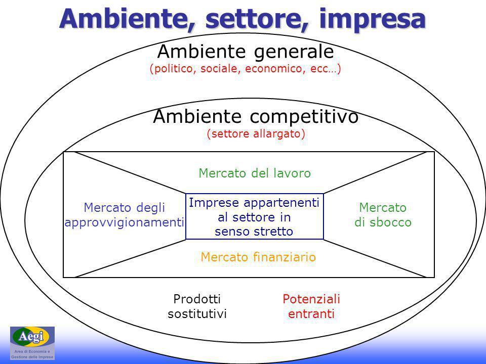 E-Commerce 2 - Dott. E. G. Rapisarda - A.A. 2006-2007 Ambiente, settore, impresa Ambiente generale (politico, sociale, economico, ecc…) Ambiente compe