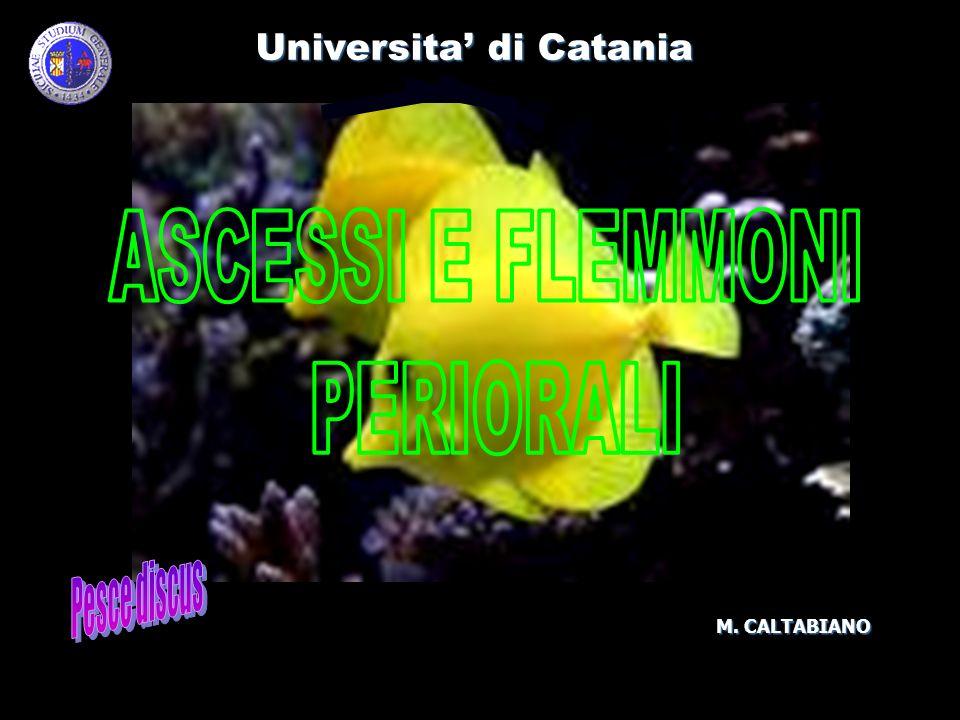 Universita di Catania M. CALTABIANO