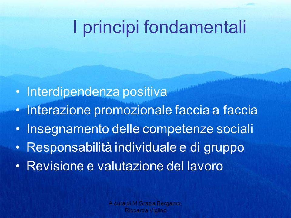 A cura di M.Grazia Bergamo, Riccarda Viglino I principi fondamentali Interdipendenza positiva Interazione promozionale faccia a faccia Insegnamento delle competenze sociali Responsabilità individuale e di gruppo Revisione e valutazione del lavoro