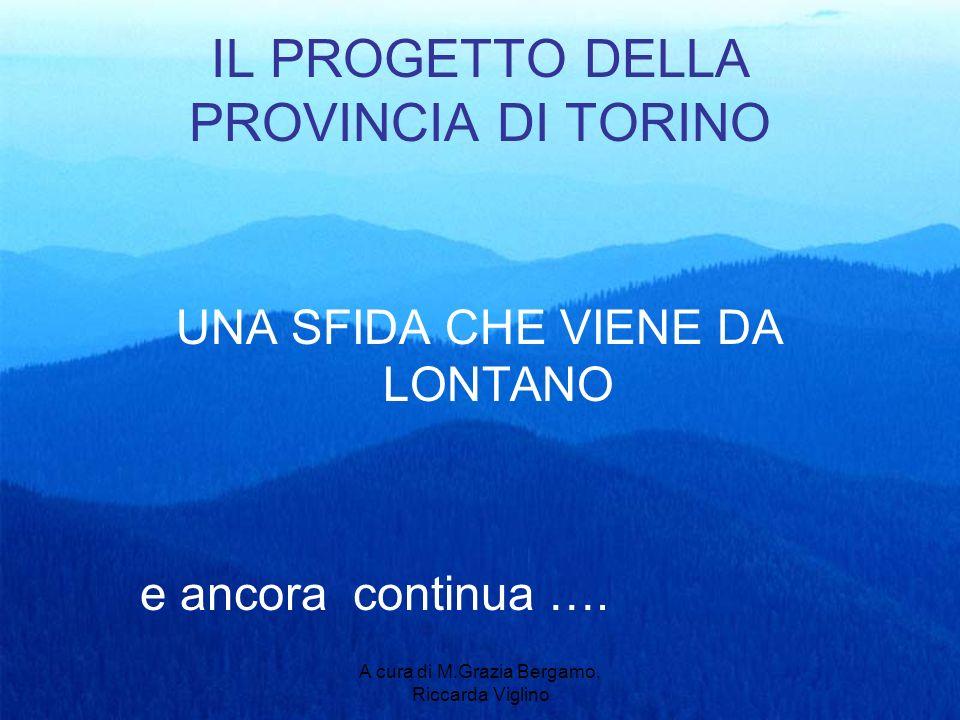 A cura di M.Grazia Bergamo, Riccarda Viglino IL PROGETTO DELLA PROVINCIA DI TORINO UNA SFIDA CHE VIENE DA LONTANO e ancora continua ….