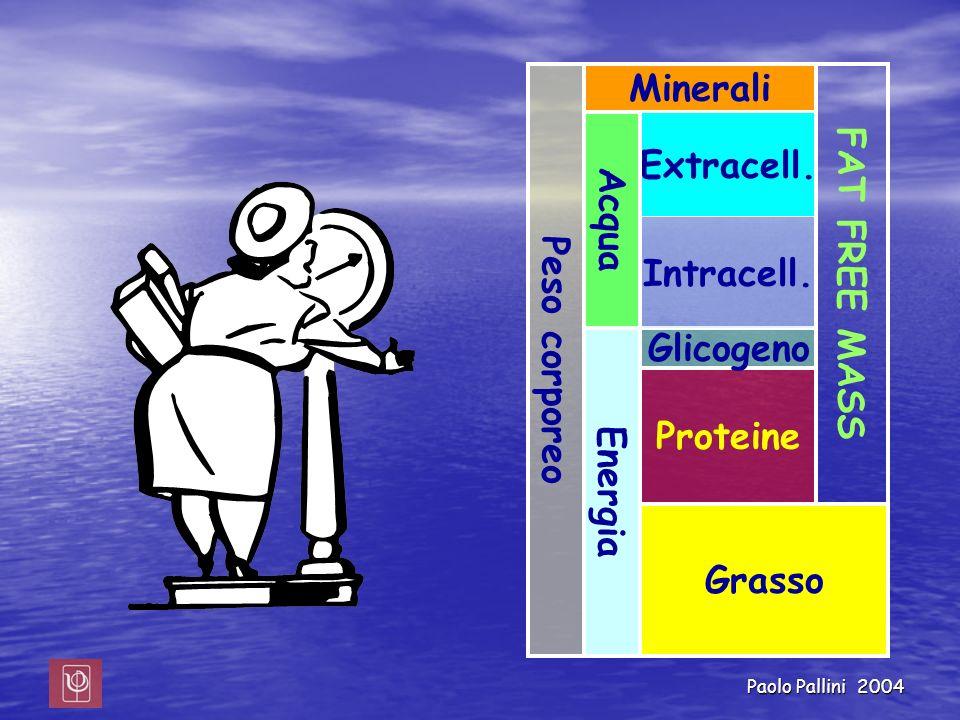 Paolo Pallini 2004 Peso corporeo Grasso Proteine Glicogeno Minerali Extracell. Intracell. Energia Acqua FAT FREE MASS