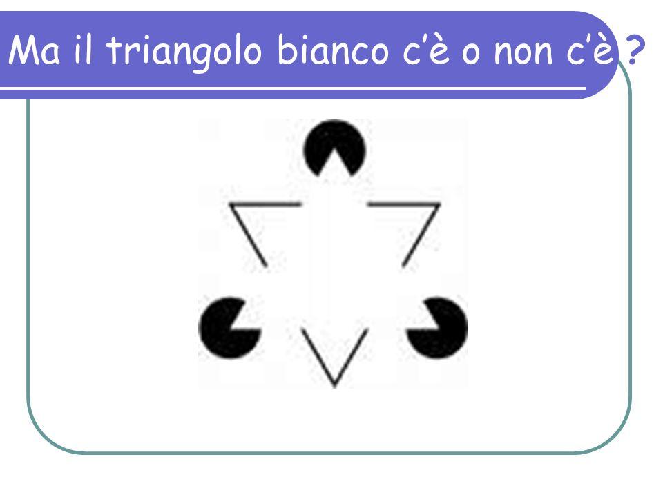 Ma il triangolo bianco cè o non cè ?