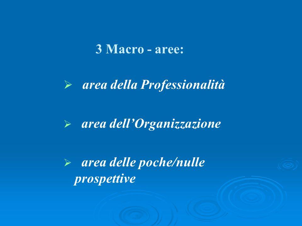 3 Macro - aree: area della Professionalità area dellOrganizzazione area delle poche/nulle prospettive