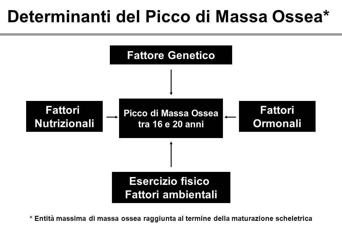 Determinanti del Picco di Massa Ossea* Fattore Genetico Fattori Nutrizionali Fattori Ormonali Esercizio fisico Fattori ambientali Picco di Massa Ossea