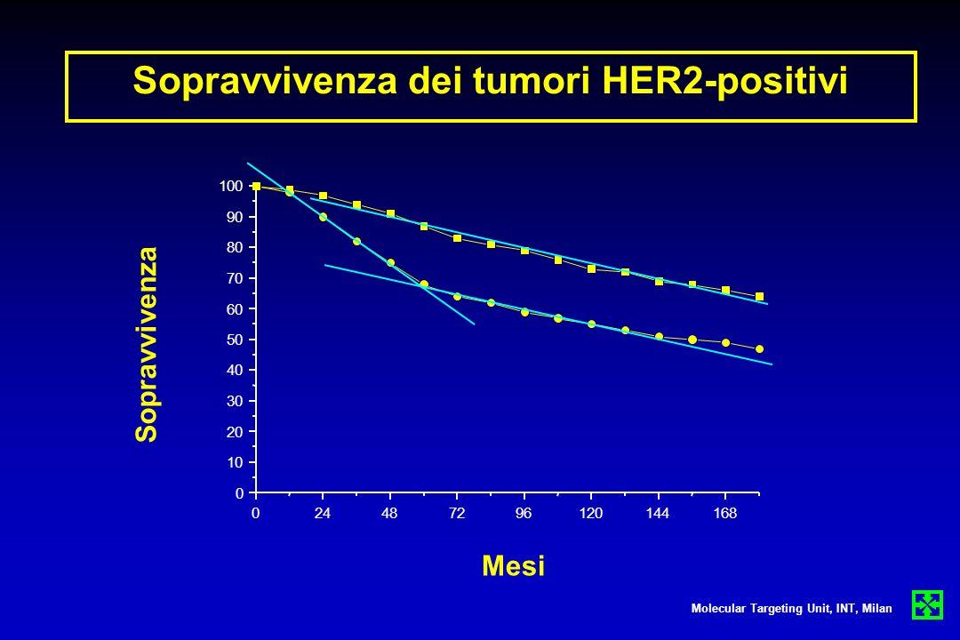Sopravvivenza dei tumori HER2-positivi Molecular Targeting Unit, INT, Milan Sopravvivenza Mesi