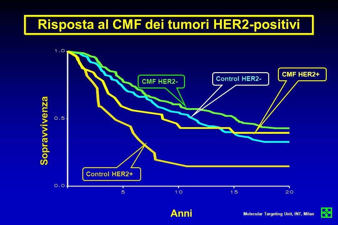 Sopravvivenza Anni Risposta al CMF dei tumori HER2-positivi Molecular Targeting Unit, INT, Milan Control HER2- CMF HER2- Control HER2+ CMF HER2+