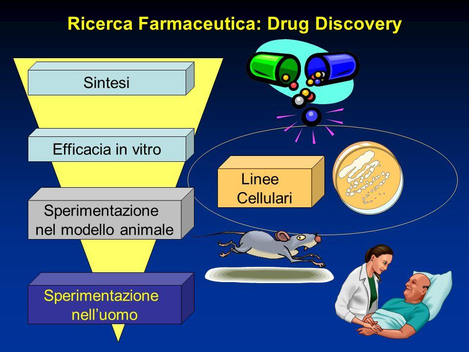 Ricerca Farmaceutica: Drug Discovery Sintesi Efficacia in vitro Sperimentazione nel modello animale Sperimentazione nelluomo Linee Cellulari
