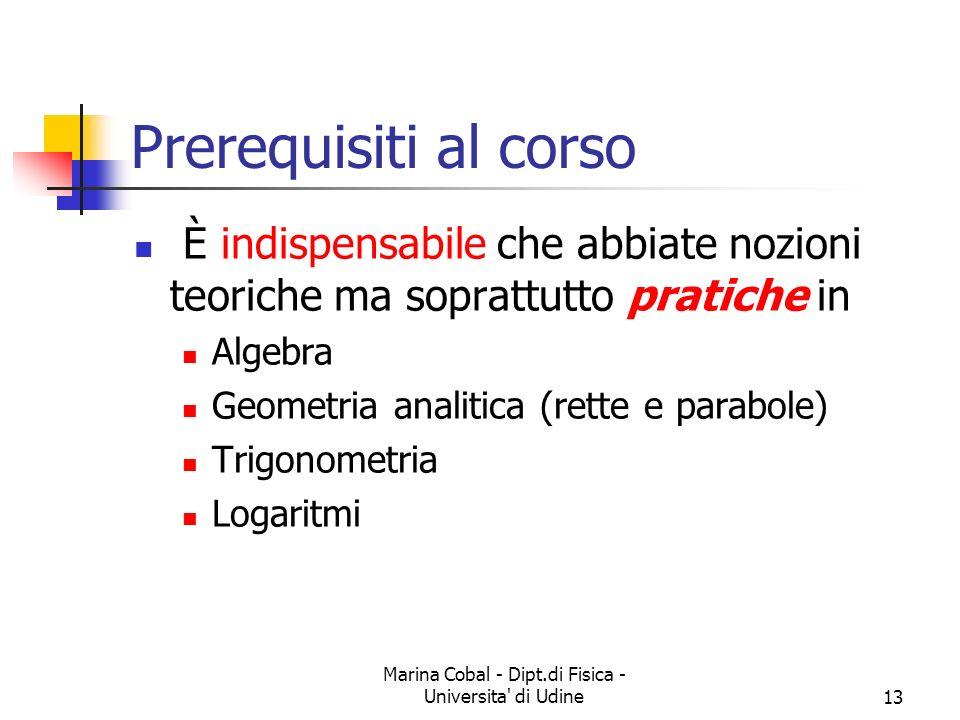 Marina Cobal - Dipt.di Fisica - Universita' di Udine13 Prerequisiti al corso È indispensabile che abbiate nozioni teoriche ma soprattutto pratiche in