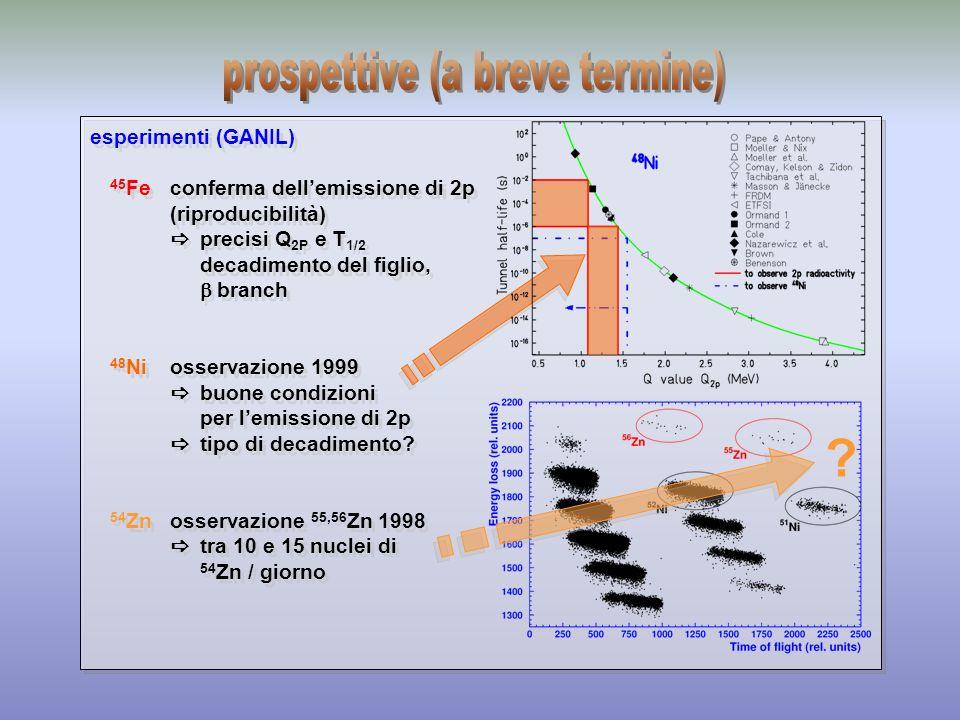 esperimenti (GANIL) 45 Feconferma dellemissione di 2p (riproducibilità) precisi Q 2P e T 1/2 decadimento del figlio, branch 48 Niosservazione 1999 buo