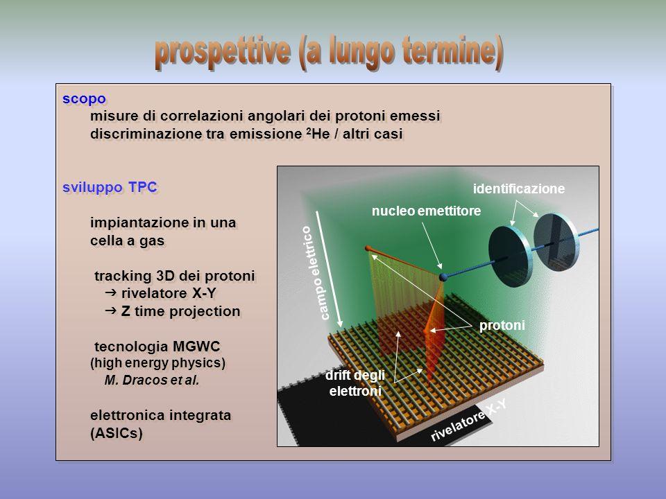 scopo misure di correlazioni angolari dei protoni emessi discriminazione tra emissione 2 He / altri casi sviluppo TPC impiantazione in una cella a gas