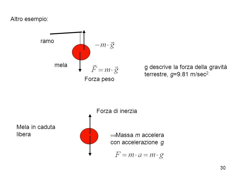 30 Altro esempio: ramo mela Forza peso g descrive la forza della gravità terrestre, g=9.81 m/sec 2 Mela in caduta libera Massa m accelera con accelerazione g Forza di inerzia