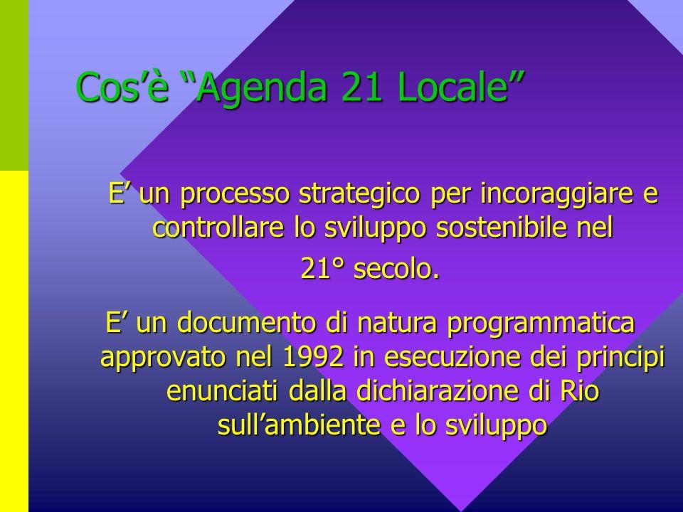 Cosè Agenda 21 Locale E un processo strategico per incoraggiare e controllare lo sviluppo sostenibile nel 21° secolo.