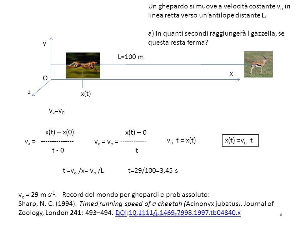 v x =v 0 x y z Un ghepardo si muove a velocità costante v o in linea retta verso unantilope distante L. a) In quanti secondi raggiungerà l gazzella, s