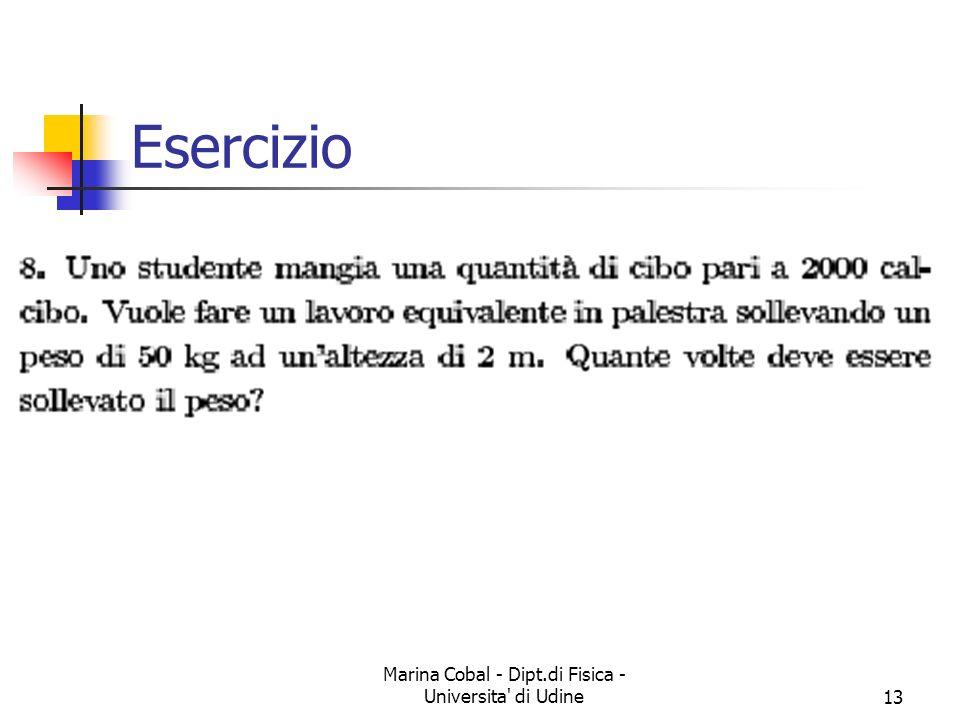 Marina Cobal - Dipt.di Fisica - Universita di Udine13 Esercizio