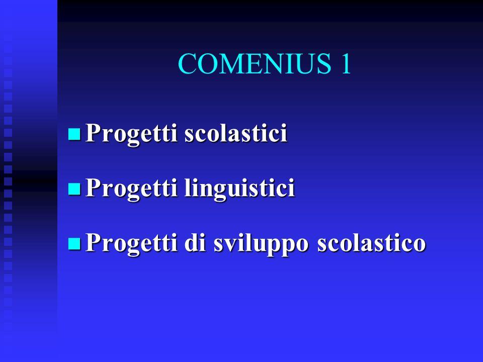 COMENIUS 1 Progetti scolastici Progetti scolastici Progetti linguistici Progetti linguistici Progetti di sviluppo scolastico Progetti di sviluppo scolastico