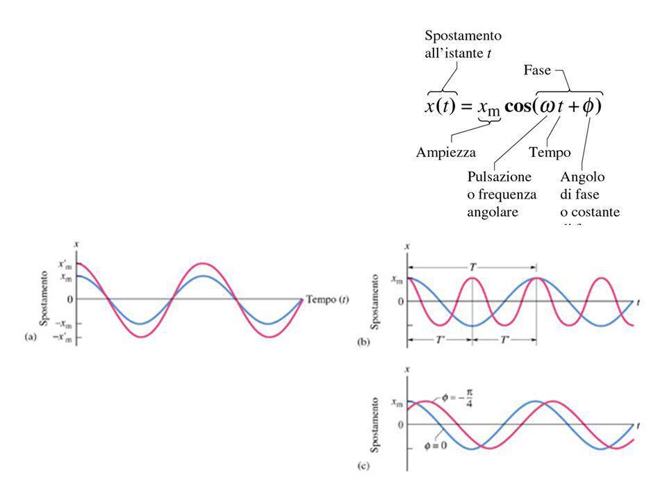 14 Per t=0 lo spostamento x(0) di un oscillatore lineare come nella figura vale -8.50 cm, la velocita e v(0)=-0.920 m/s, e laccelerazione a(o)=47.0 m/s 2.