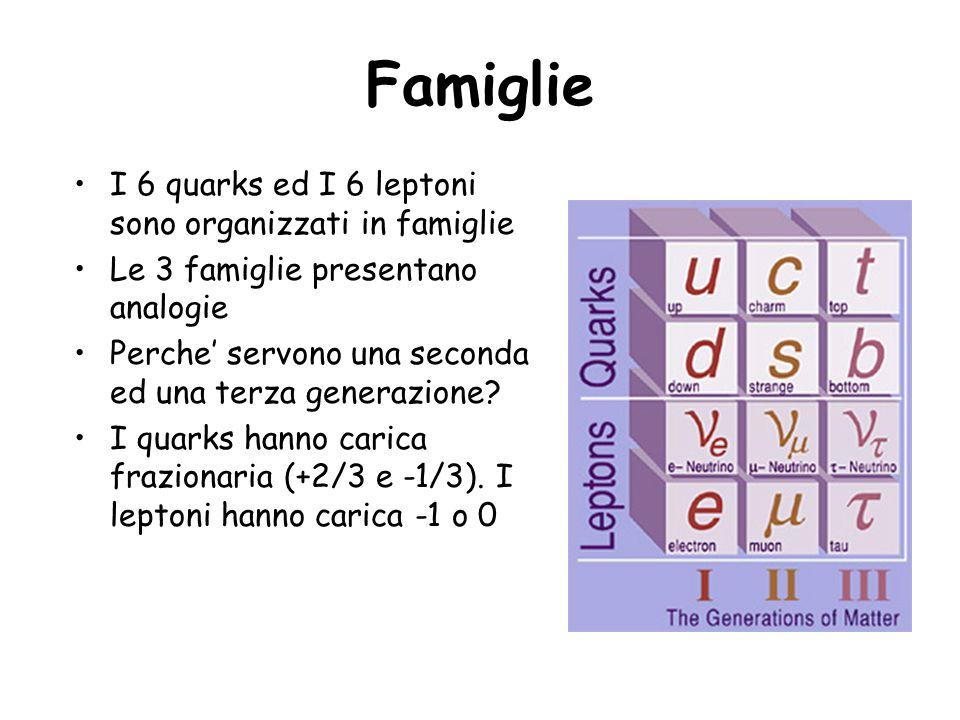 Famiglie I 6 quarks ed I 6 leptoni sono organizzati in famiglie Le 3 famiglie presentano analogie Perche servono una seconda ed una terza generazione?