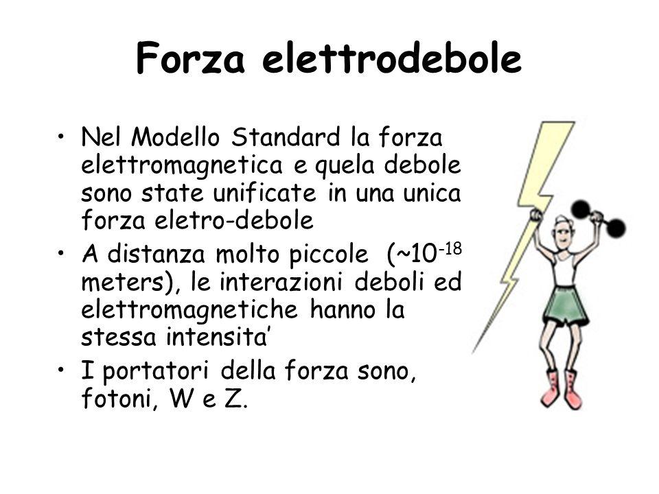 Forza elettrodebole Nel Modello Standard la forza elettromagnetica e quela debole sono state unificate in una unica forza eletro-debole A distanza mol