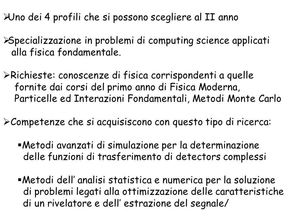 Uno dei 4 profili che si possono scegliere al II anno Specializzazione in problemi di computing science applicati alla fisica fondamentale.