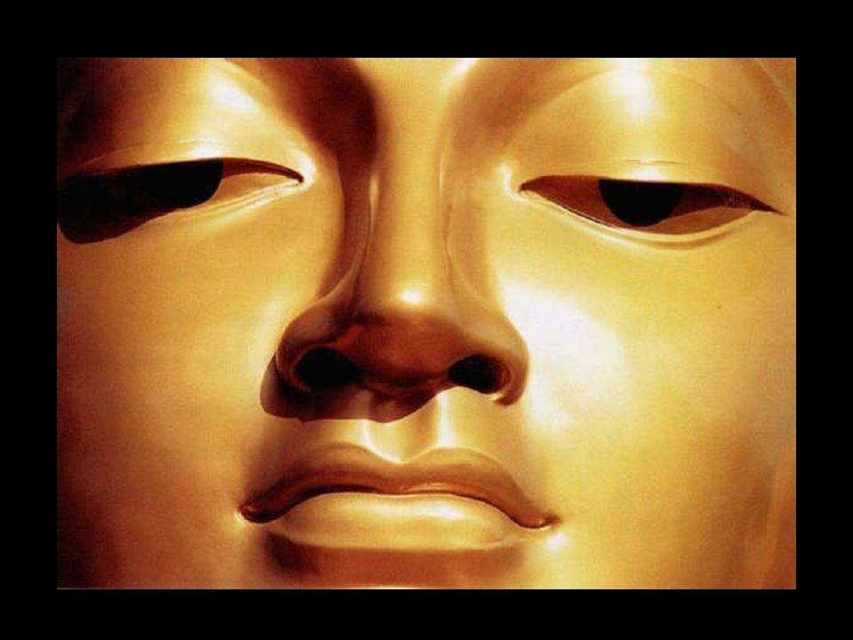 7 LILLUMINAZIONE Dopo anni di pratiche,una notte raggiunge la liberazione, diventa lIlluminato (=Buddha) e si sente portato in una beatitudine straordinaria: il Nirvana.
